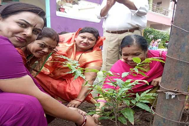 Under the campaign of 'Hara Bhara Aur Sheetal Bharat', plantation was done by Maharishi World Peace Movement in BHEL Nagar, Bhopal.